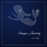 Diamond branding identity. Royalty Free Stock Photography