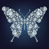Diamond butterfly, Royalty Free Stock Photos