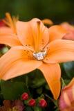 Diamond Celebration. Beautiful diamond engagement ring nestled in a flower Stock Image