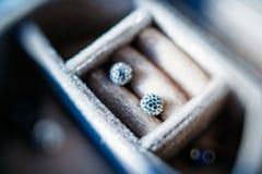 Diamond crystal earrings Royalty Free Stock Image
