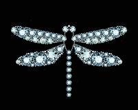 Diamond Dragonfly Royalty Free Stock Image