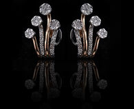 Diamond earings with reflection Stock Photos
