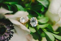 Diamond Earrings Stockfotos