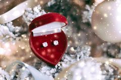 Free Diamond Earrings In Heart Shaped Jewellery Gift Box On Christmas Tree, Love Present For New Years Eve, Valentines Day And Winter Stock Photo - 158487510