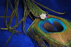 Diamond engagement ring 2. Diamond engagement ring displayed on peacock feather royalty free stock photos