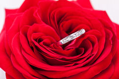 Diamond engagement ring in the heart of a red rose Royalty Free Stock Image