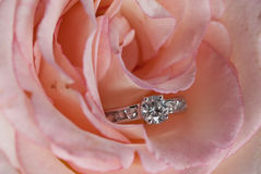 Diamond Engagement Ring in Pink Rose Royalty Free Stock Image