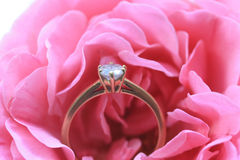 Diamond engagement ring in a pink rose Royalty Free Stock Photos