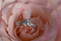 Diamond Engagement Ring In Unfolding Pink Rose Royalty Free Stock Image