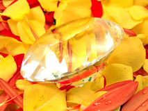 Diamond and Flower Petals Stock Photography