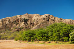 Diamond Head Crater Immagini Stock