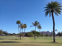 Diamond Head Golf Image stock