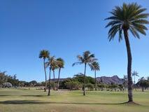Diamond Head Golf Stock Image