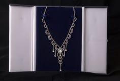 Diamond necklace in a case Stock Photos