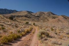 Diamond Off Road Trails azul imagem de stock royalty free