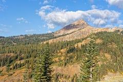 Diamond Peak, Kalifornien stockfotografie