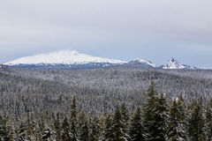 Diamond Peak Willamette National Forest stock images