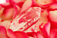 Diamond on petals