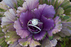 Diamond Promise. Wedding ring, engagement ring, and wedding band arranged in a flower Royalty Free Stock Photos