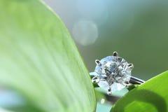 Diamond ring. Set on green leaf Stock Image
