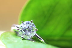 Diamond ring. Set on green leaf Royalty Free Stock Image