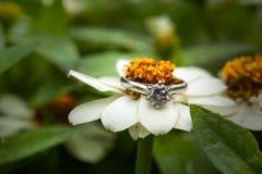 Diamond Ring Royalty-vrije Stock Foto