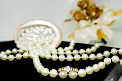 Diamond ring. With pearl necklace sea shell and flower in a beautiful arrangement Stock Images