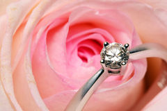 Free Diamond Ring And Rose Stock Photography - 7330592
