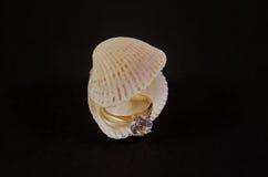 Diamond Ring en concha marina imágenes de archivo libres de regalías
