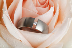 Diamond ring inside apricot colored rose blossom Stock Photo