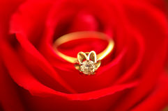 Diamond ring over the red rose. Bud - shallow depth of field Stock Image