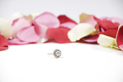 Diamond ring and petals Stock Images