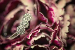 Diamond ring in a pink flower Royalty Free Stock Images