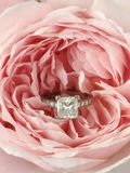 Diamond ring in pink rose. Diamond princess cut engagement ring in an English rose, Queen of Sweden Royalty Free Stock Image