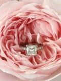 Diamond ring in pink rose Royalty Free Stock Image