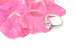 Diamond ring and rose. Diamong ring on pink rose , isolated on white Stock Photo