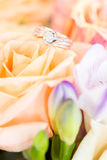 Diamond ring on rose Royalty Free Stock Image