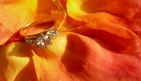 Diamond Ring on Rose Petals. Diamond engagement ring lying on bed of romantic orange rose petals royalty free stock photography