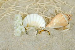 Diamond ring and seashells Stock Photography