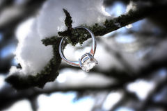 Diamond ring in winter scene Stock Image