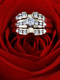 Diamond rings in a rose. Closeup of a triplicate of matching diamond rings, sitting inside the petals of an opened red rose Stock Photo