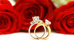 Diamond rings and roses Stock Images