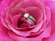 Diamond Rose. Photo of a diamond wedding ring in the center of a pink rose Royalty Free Stock Photo