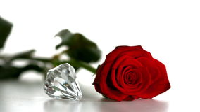 Diamond spinning beside red rose on white background stock footage