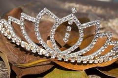 Diamond Tiara On una cama de Brown Autumn Leaves Imagen de archivo libre de regalías