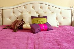 Diamond upholstery bed head pink blanket Royalty Free Stock Image