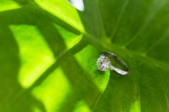 Diamond wedding ring Royalty Free Stock Images