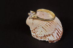 Diamond Wedding Ring on seashell Royalty Free Stock Photo
