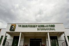 Dian Fossey Gorilla Fund International forskningscentrum royaltyfri bild