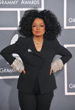 Diana Ross Royalty Free Stock Image